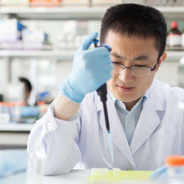 Farmacéuticas y Químicas